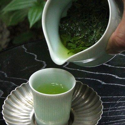 2021【袋入】 新茶
