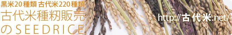 黒米20種類 古代米220種類 古代米種籾販売のSEEDRICE(http://古代米.net)