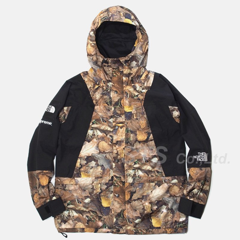 Supreme/The North Face Mountain Light Jacket