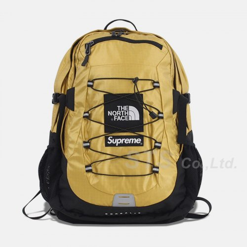 Supreme/The North Face Metallic Borealis Backpack