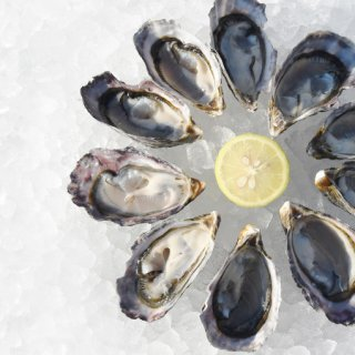 瞬間凍結 クレールストライプオイスター(ハーフシェル)(冷凍 塩田熟成縞牡蠣)