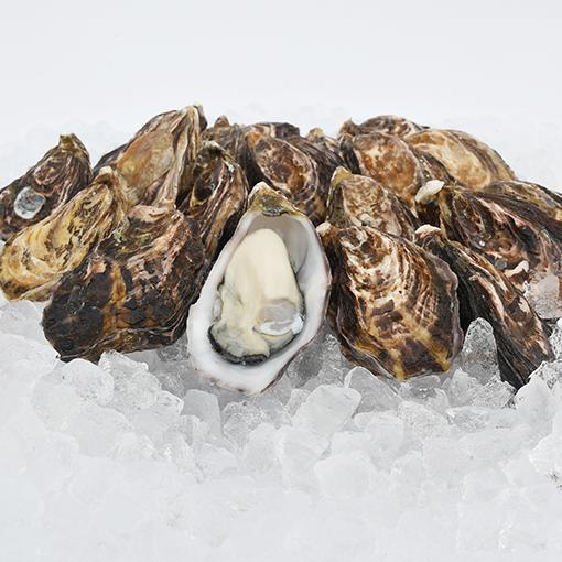 ストライプオイスター(塩田熟成縞牡蠣)