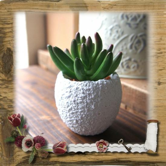 【E*Necolle】フェイク多肉植物withラフエッグポット