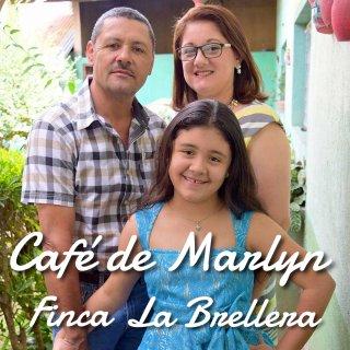 ニカラグア|パカマラ フルウォッシュド|ラ・ブレジェーラ農園 「カフェ・ド・マリリン」2018/2019 生豆