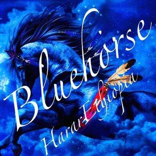 エチオピア|悠久のハラール|ブルーホース|2019/2020 生豆