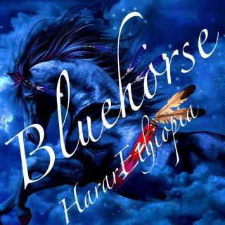 エチオピア|悠久のハラール|ブルーホース|2020/2021 焙煎豆(極・深煎り)