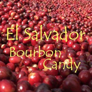 エルサルバドル|ラ・ホヤ農園|ブルボン100%「ブルボン・キャンディ」|2019/2020 生豆