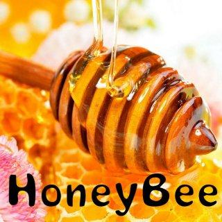 コスタリカ |セントラルバレー・ソノラ農園 | ハニー |HoneyBee|2019/2020  (浅煎り)焙煎豆
