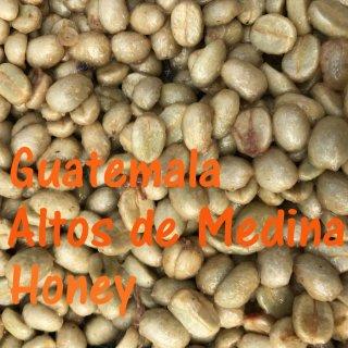 グアテマラ|アルト・デ・メディナ農園|ハニー|ハニーエンジェル|2019/2020 (生豆)
