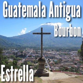 グアテマラ|アルト・デ・メディナ農園|フルウォッシュド|2019/2020 (生豆)