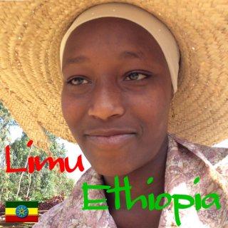エチオピア|モカ・リム|G1・ナチュラル|ダウィット・ギルマ|2019/2020 焙煎豆(浅煎り)
