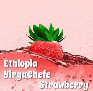 エチオピア|モカ イルガチェフェ・ナチュラルG1|コンガ|ストロベリー|2020/2021|生豆