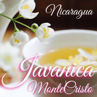 ニカラグア|モンテクリスト農園|ジャバニカ 自然栽培|24時間非水洗い乾燥・ハニー|2019/2020(中・浅煎り) 焙煎豆