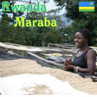 ルワンダ |マラバ|シルバーバック|焙煎豆