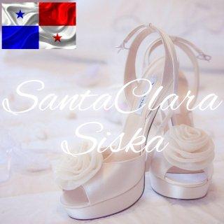 ニカラグア|サン・ファン・デ・リオ・ココ|「リゴベルト」2018/2019 生豆