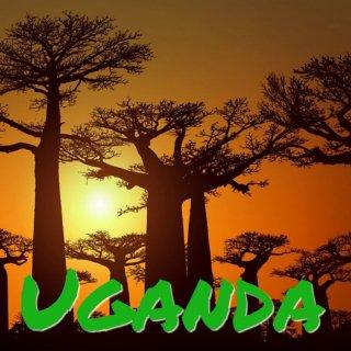ウガンダ|ルウェンゾリ山地|アフリカンムーン 2017/2018 焙煎豆