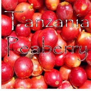 タンザニア|ピーベリー|マウェンギ・ファクトリー|2017/2018 生豆