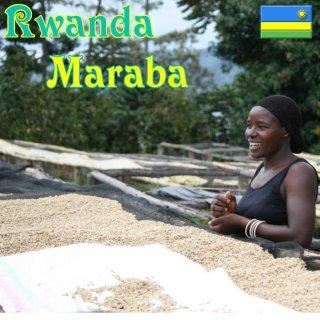 ルワンダ|マラバ|シルバーバック|2016/2017|生豆