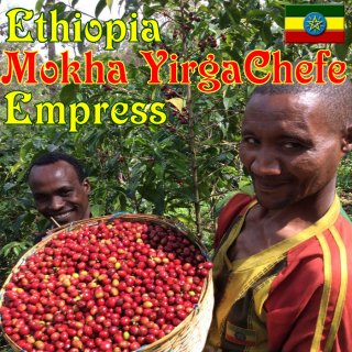 エチオピア|モカ イルガチェフェG1 |エンプレス|2020/2021|生豆