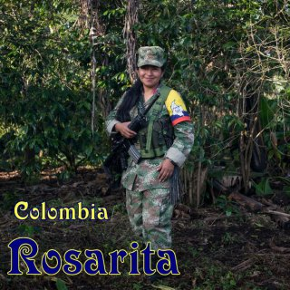 コロンビア|カウカ|ブルボン・ロザリータ「元反政府レジスタンスのコーヒー」|2019/2020 焙煎豆(中煎り)