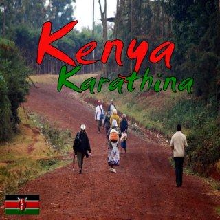ケニア AA   |  カラティナファクトリー  |  レッドソウル 生豆  2018/2019 生豆