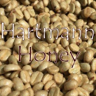 パナマ|ハートマン農園|カツーラハニー|ハートマンズハニー|2019/2020|生豆