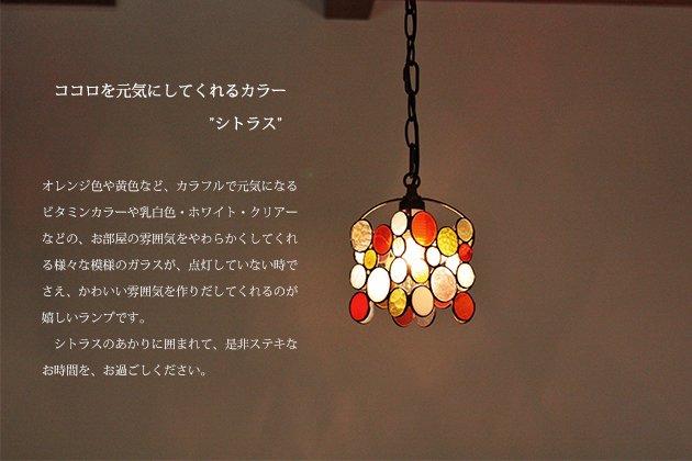 Drops citrus ドロップス シトラス【画像4】