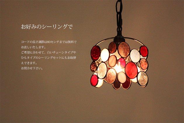 Chibi berry チビ ベリー【画像2】