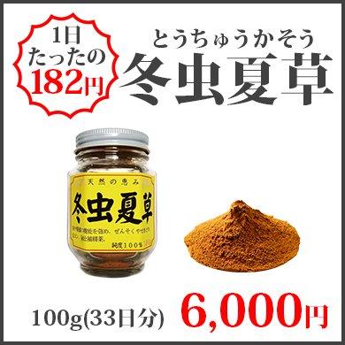 冬虫夏草(100g)