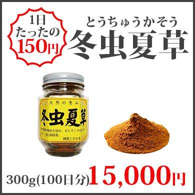 冬虫夏草(300g)
