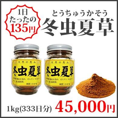 冬虫夏草(1kg)