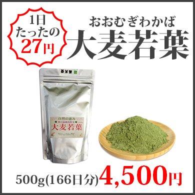 大麦若葉(500g)