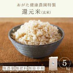 還元米-朝日玄米5kg(おがた健康農園-熊本県産)無農薬・無肥料栽培【2020年度産新米】