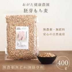 胚芽もち麦400g(おがた健康農園-熊本県産)無農薬・無肥料栽培