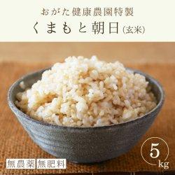 朝日 玄米(おがた健康農園特製 無農薬・無肥料栽培)5kg-2019年秋収穫
