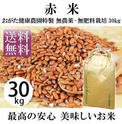 赤米-無農薬・自然栽培(おがた健康農園特製 熊本県上益城郡甲佐)30kg-29年度産-【送料無料】