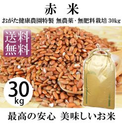 赤米-無農薬・自然栽培(おがた健康農園特製 熊本県上益城郡甲佐)30kg【送料無料】