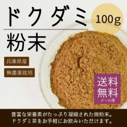 ドクダミ粉末100g(兵庫県産・無農薬栽培)【送料無料】*メール便での発送*【在庫限り】