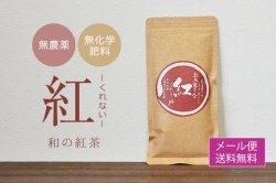 桜野園 和の紅茶「紅」 60g 【送料無料】*メール便での発送*