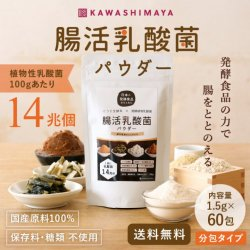 【30%OFF】日本の発酵食品からとれた「腸活乳酸菌パウダー」分包タイプ(1.5g×60包)【送料無料】【在庫限り】<img class='new_mark_img2' src='https://img.shop-pro.jp/img/new/icons7.gif' style='border:none;display:inline;margin:0px;padding:0px;width:auto;' />