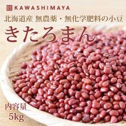 きたろまん小豆 5kg|北海道 渡部農場産 無農薬・無化学肥料の小豆キタロマン【送料無料】