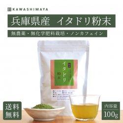 イタドリ葉粉末 100g 無農薬・無化学肥料栽培(兵庫県産)