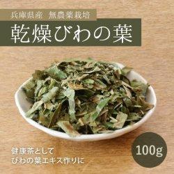 びわの葉・乾燥タイプ100g(兵庫県産・無農薬栽培)