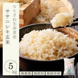 無農薬 無肥料 除草剤不使用 自然栽培 宮城県産 ササニシキ 玄米5㎏ 一等米 なりさわ生命食産