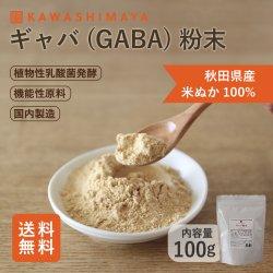 ギャバ(GABA)粉末 100g 国産米ぬか100% 酒蔵植物性乳酸菌発酵 【送料無料】*メール便での発送*