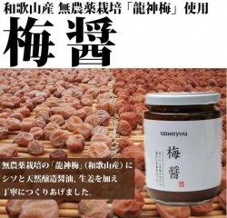 梅醤(無農薬龍神梅・紫蘇・天然醸造醤油・生姜の梅醤)250g-龍神梅特製-