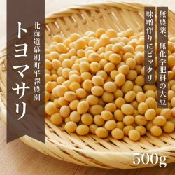 無農薬大豆「トヨマサリ」500g -北海道平譯農園-2020年秋収穫・新豆