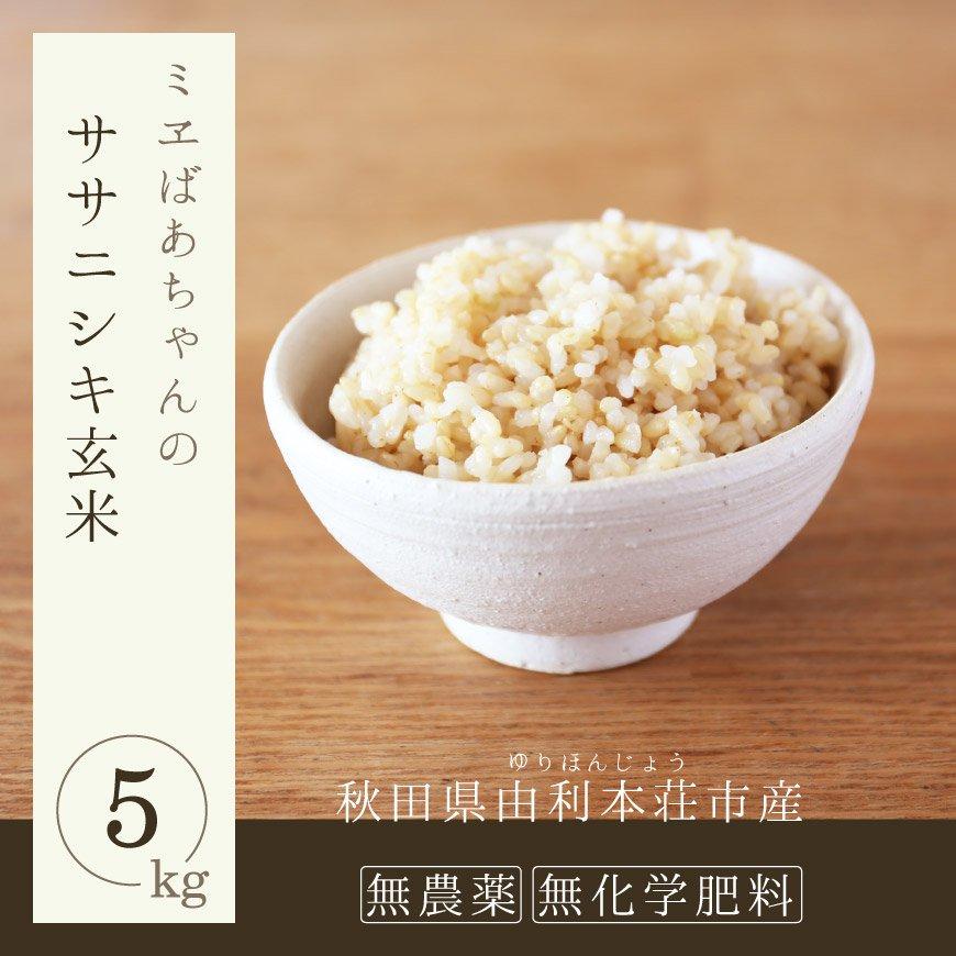 無農薬玄米(ササニシキ玄米)5kg-由利本荘産 平成29年度産 新米