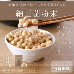 納豆菌粉末3g-有機大豆抽出100%【送料無料】*メール便での発送*