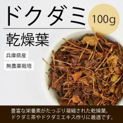ドクダミ葉・乾燥タイプ100g(兵庫県産・無農薬栽培